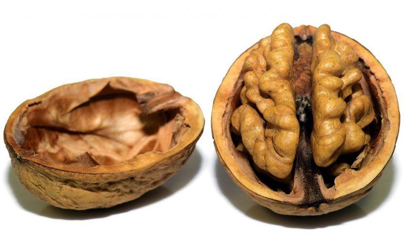 Bağırsak ve Beyin İlişkisini Açıklayan 4 Gerçek