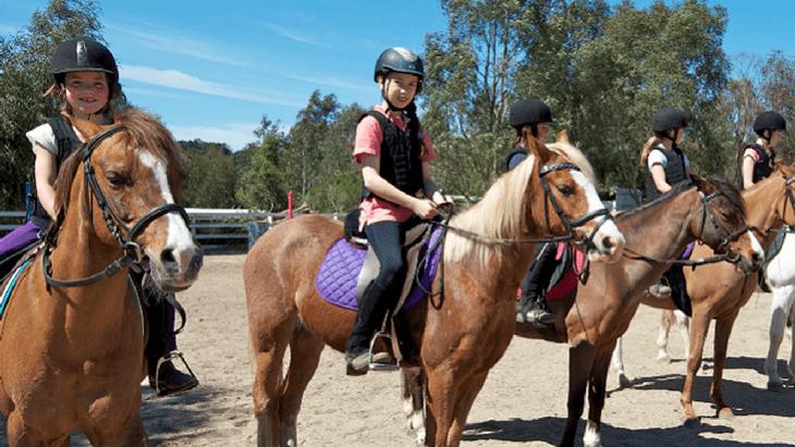 Çocuklarımızın Sağlıklı Gelişiminde Atların İnanılmaz Etkisi!