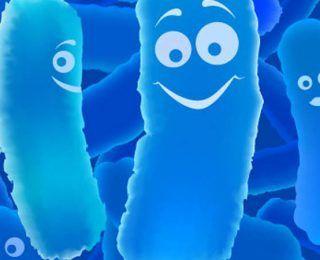 Sağlığınız İçin En İyi 18 Probiyotik Bakteri