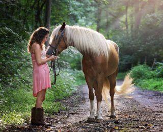 Atların Mucizevi Terapi Etkisi