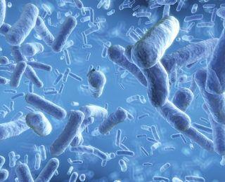 Probiyotiklerin Yan Etkisi Var Mıdır?