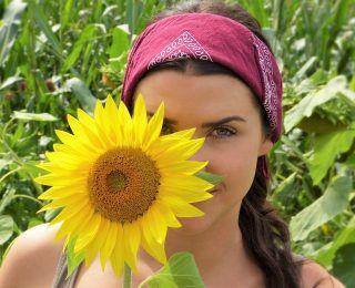 Tohum Yağları Kolesterol Düşürmede Faydalı Mıdır?