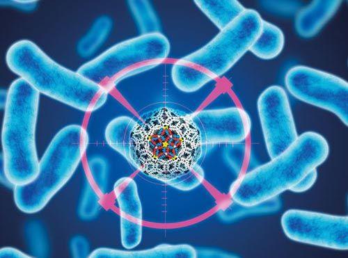 Yeni bir virüs salgını… Uzmanlar ilaç ve aşısı olmayan Batı Nil Virüsü'ne karşı uyarıyor