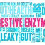 Sindirim Enzimleri: Bağırsak Sağlığı ve Besin Absorpsiyonu