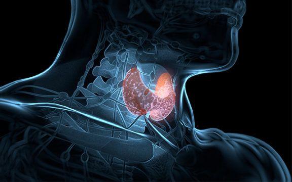 Tiroid Nodüllerine İğne Biyopsisi Nedir?