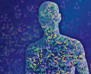 Bağırsak Bakterileri Kökenimizi Belirleyebilir Mi?