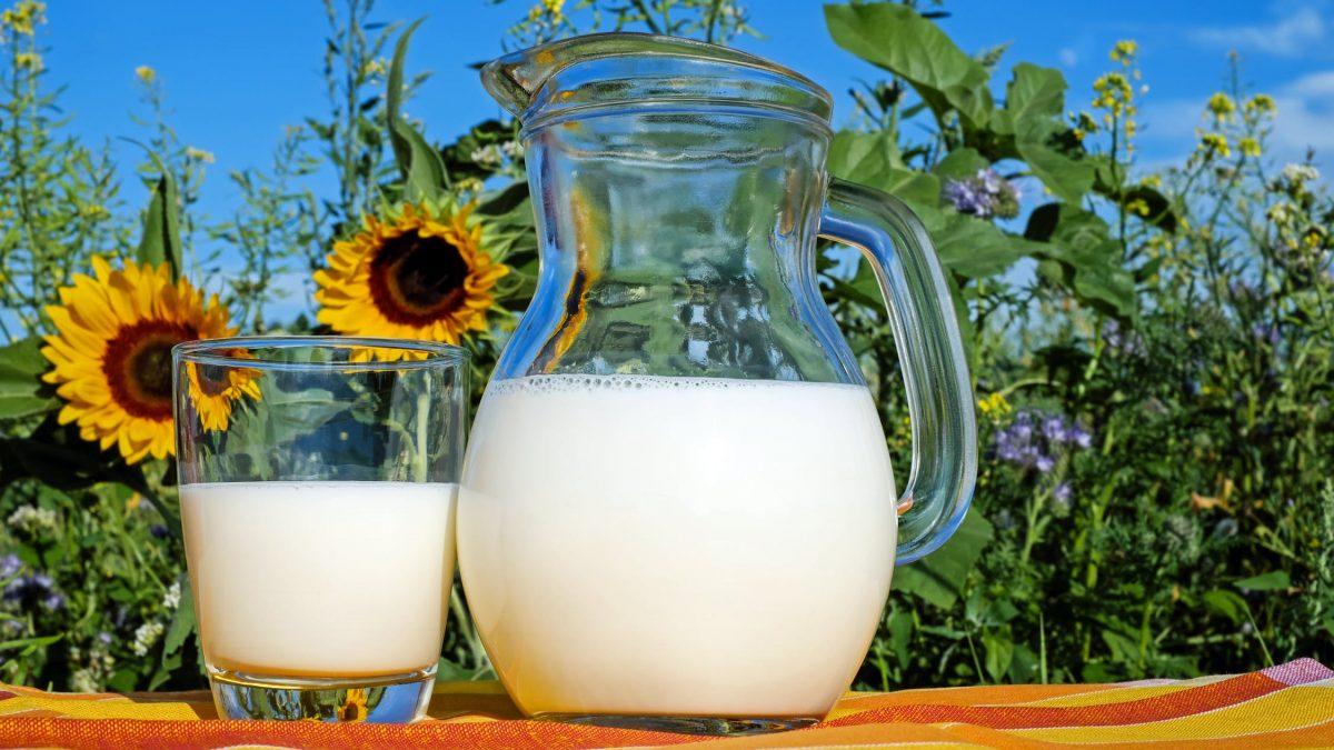 Süt Gerçekten Sağlıklı Mı? Kanada'nın Yeni Yemek Rehberi Gerekli Olmadığını Söylüyor