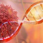 Bağışıklık Sistemimizi Kansere Karşı Programlamak