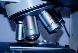 Probiyotiklerin Mikrobiyomdaki Yaygın Etkileri