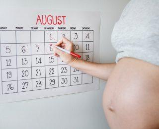 Hafta Hafta Hamilelik