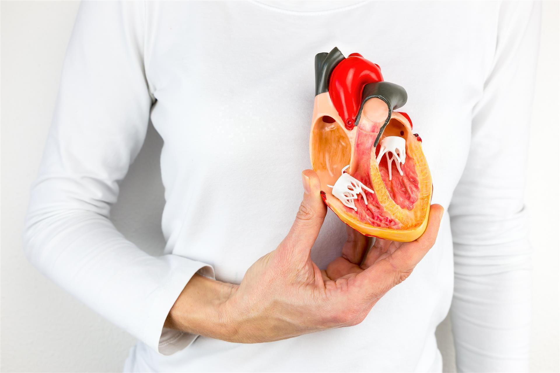 Kalp Krizi Geçirdiğinizi Nasıl Anlarsınız ve Tedavi Edersiniz?