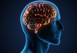 Beyin Yapısı Ruh Sağlığı için Rol Oynayabilir