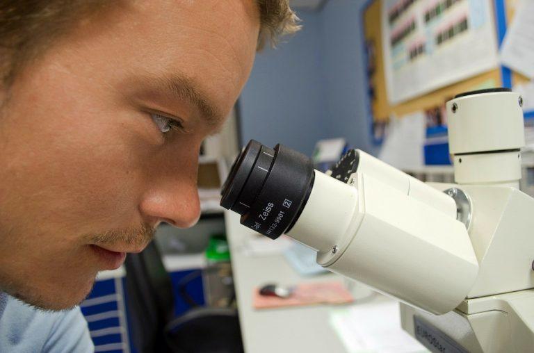 Türk Bilim İnsanları Beyin Kanseri Tedavisi İçin Benzersiz Bir Adım Attı