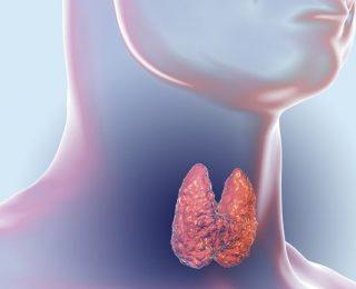 Hipotiroidizm Hakkında Bilmeniz Gereken Her Şey