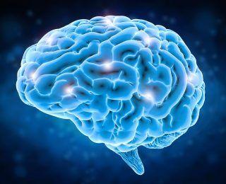 Organik Beyin Sendromu