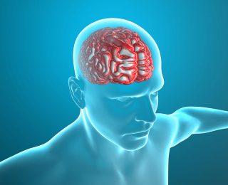 Beyin Sarsıntısı Sendromu