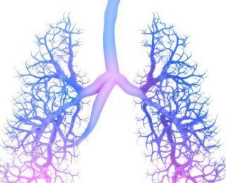 Kronik Obstrüktif Akciğer Hastalığı Hakkında Bilmeniz Gereken Her Şey (KOAH)