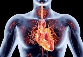 Aort Kapak Yetersizliği