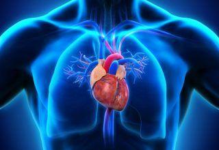 Aort Kapak Hastalığı
