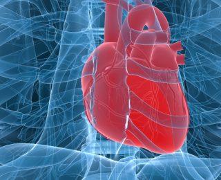 Patent Duktus Arteriozus