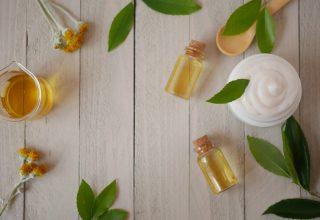 Çay Ağacı Nedir? Faydaları Nelerdir?